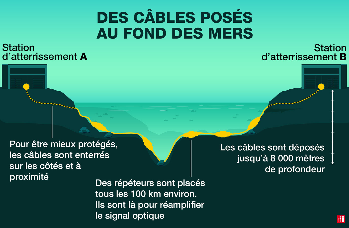 infographie fonds marins